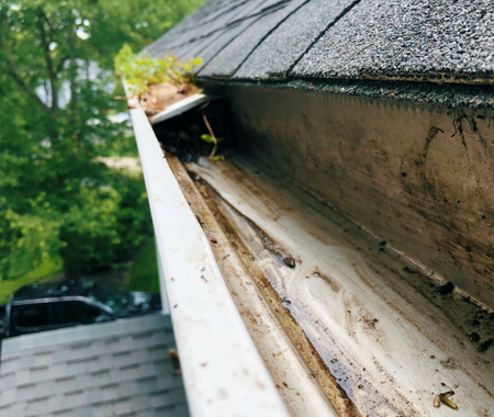 Gutter Cleaning Pressure Washing Company In Richmond Va